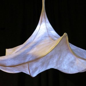 Morning Glory LED Nature Light Fixture