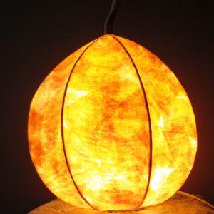 Jack | LED Nature Light Fixture 1