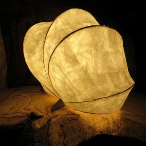 Fossil | LED Nature Light Fixture 3
