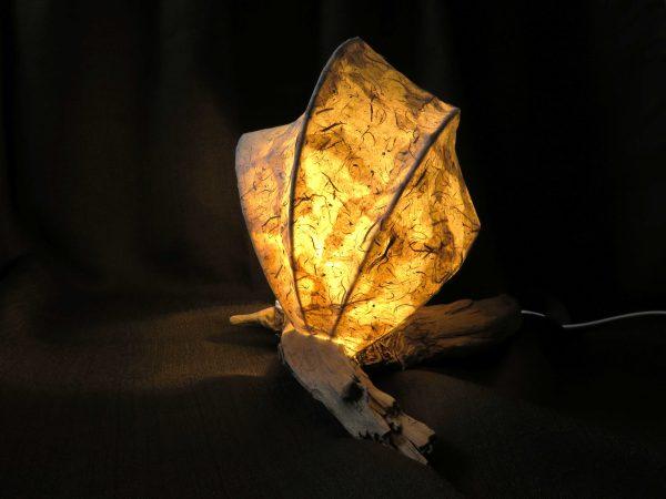 Sand Wave | LED Nature Light Fixture 1