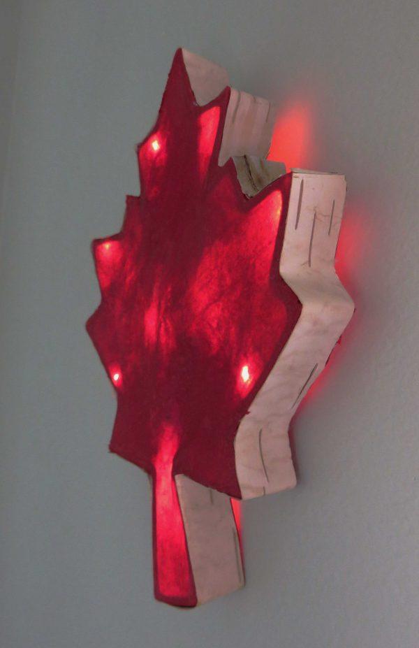 Crazy Canuck | LED Nature Light Fixture 3