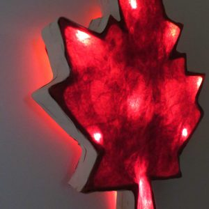 Crazy Canuck | LED Nature Light Fixture 1
