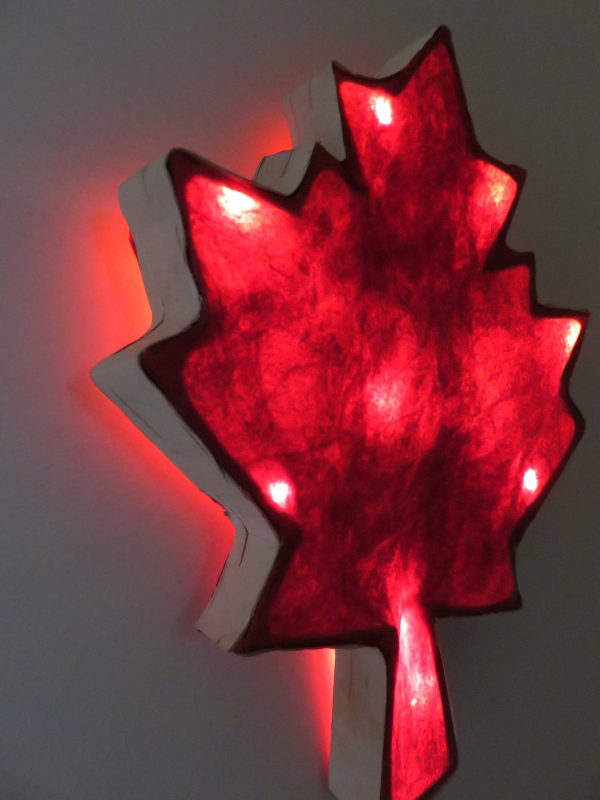 Crazy Canuck | LED Nature Light Fixture 1