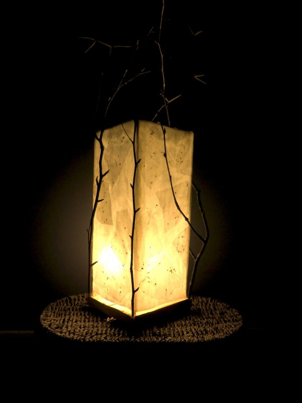 One with Mother | LED Nature Light Fixture 2