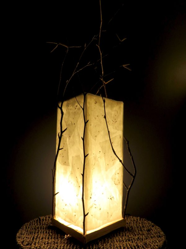 One with Mother | LED Nature Light Fixture 3