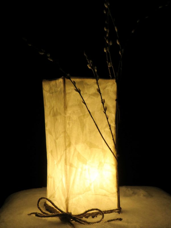 Signs of Spring | LED Nature Light Fixtures 1