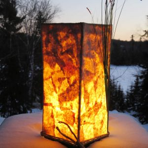 Shades of Spring | LED Nature Light Fixtures 2