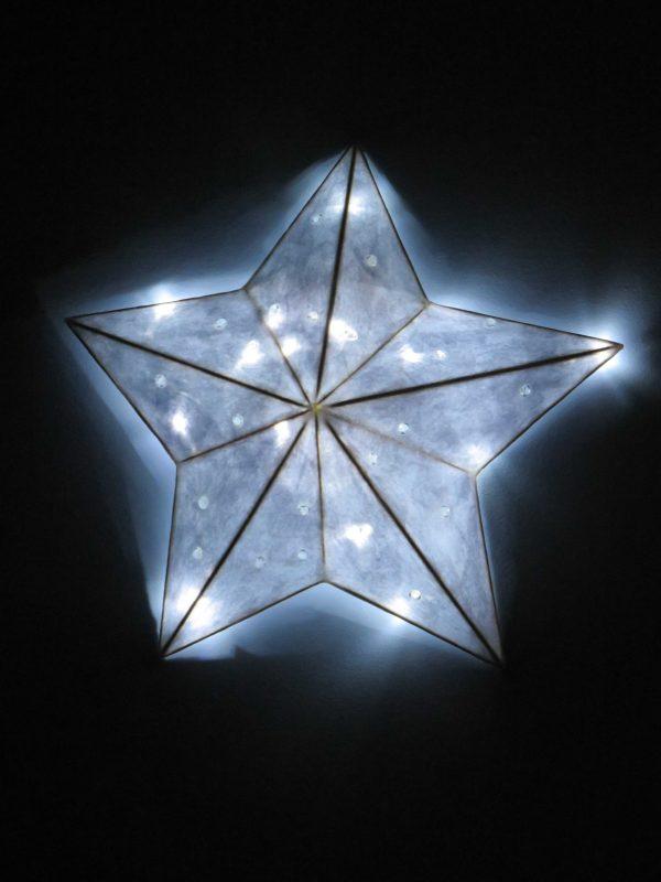 Sparkles | LED Nature Light Fixtures 4