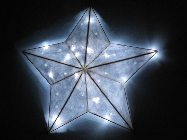 Sparkles | LED Nature Light Fixtures 5