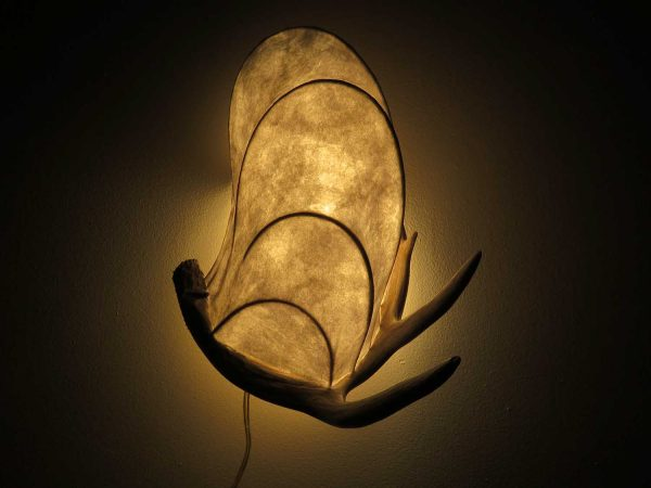 Young Buck   LED Nature Light Fixture 08
