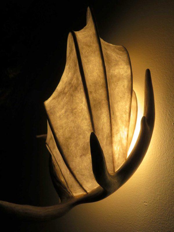 Young Buck   LED Nature Light Fixture 06