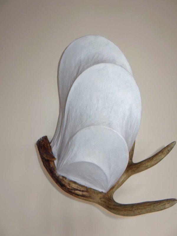 Young Buck   LED Nature Light Fixture 05